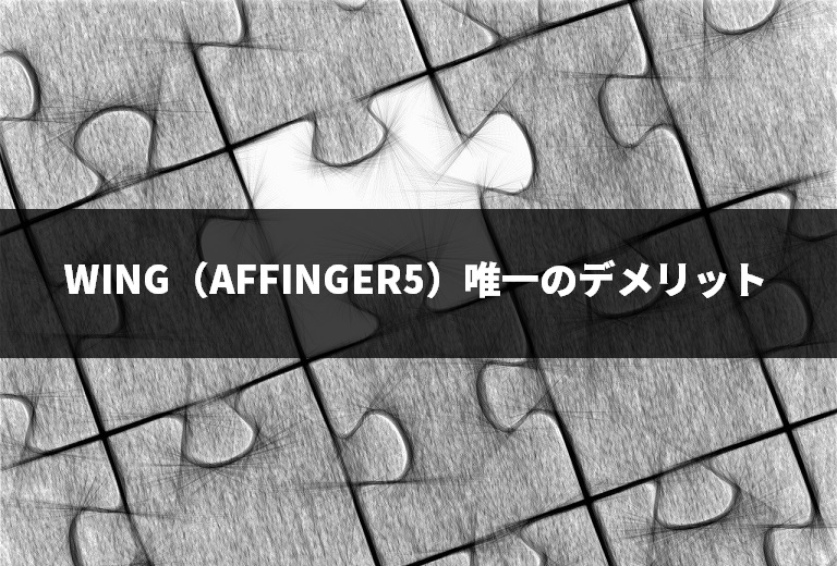WING(AFFINGER5)唯一のデメリット